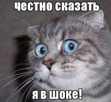 http://virtmachine.ru/